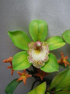 Saiba qual a importância das flores no ambiente de trabalho https://www.youtube.com/watch?v=PUYH3hO_4O8&list=PLnh2K5IrSJ8mi-DJOIcC3vMdVMTB7gYQY https://www.facebook.com/GROUPPFLORES https://www.pinterest.com/verdejandoarqui/ Cymbidium Orchid...