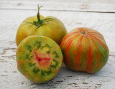 Green Berkeley Tie-Dye Tomato Seeds - Tomato Growers Supply Company