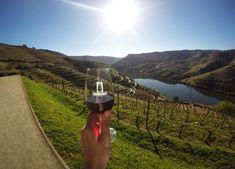 Quinta do Seixo Douro, Portugal, Mountains, Nature, Travel, Pedestrian, Screenwriting, Wine Pairings, Destinations