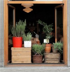 Wooden crates, baskets, greenery