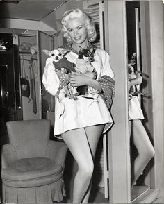 Jane mansfield and her chihuahuas