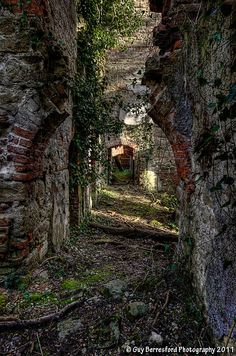 Ruins of Piercefield house Chepstow, Wales, by Guy Berresford Photography