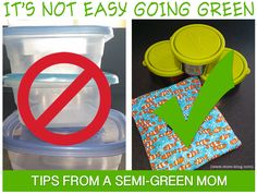 Struggles and Successes in Going Green For You and Your Family