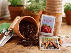 9 Vegetables to Grow Indoors | Reader's Digest