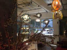 Goccia, Flora, Veli ad Clizia at Zagmachi in Seoul