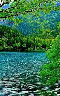 Доброе утро, я люблю тебя, Хазма .. Ты красивая и добрая девушка .. 🌹 Beautiful Landscapes, Beautiful Scenery, Life Is Beautiful, Beautiful Places, Beautiful Pictures, Nature Pictures, Natural Beauty, Lake Louise Banff, Green Nature