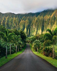Bali Travel, Hawaii Travel, Hawaii Usa, Luxury Travel, Hawaii Life, Beautiful Places To Travel, Wonderful Places, Ubud Bali, Travel Around The World