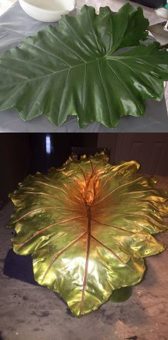 My first ever concrete leaf made from an elephant ear. It will soon be a bird bath in my garden...