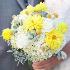 White and yellow bridal bouquet: a combination of white hydrangeas, silver hen and chicks, and yellow caspedias with a few white roses for accents.