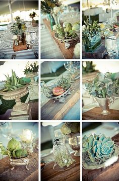 I am sloooowly being drawn to the succulents trend.. of course, it may end by the time I am on board.  Bah. :)