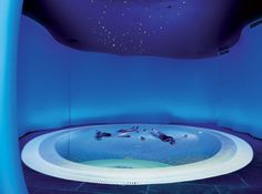 Deep relaxation is just one of the benefits of flotation pool therapy