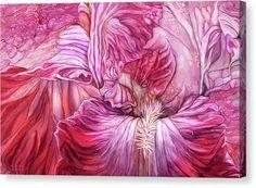 Alcohol Ink Canvas Print - Wild Iris Red by Carol Cavalaris