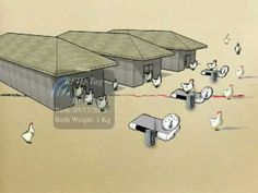 Chicken Coops Tracability System with Zigbee Communication devices