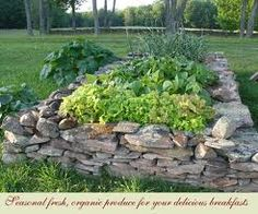 Raised garden bed with stone