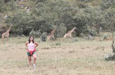 1 day Hiking: One day Nairobi hikes are full day hiking triptours to mt Longonot or hells gate national parks. The Nairobi 1 day hiking safaris are a fun way to see Longonot crater or the gorges and hotsprings and geysers of hells gate national park from your Nairobi hotel. The 1 day Nairobi hikes are offered as joining or shared safaris and include transport, park entry fees and picnic lunch with a pick up from your Nairobi hotels.