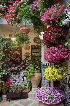 """Top 10 Patio Ideas Garden Inspiration Beautiful Gardens Plants The Long Border Backyard Backyard Landscaping Flower Garden Design Small Apartment Patio Flower Garden Patio Flowers Small Patio How To Grow … Read More """"Patio Flower Garden"""""""