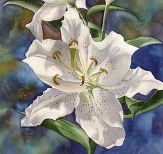 Alfred Ng (b.1955) — White Lily, 2014  (900x850)
