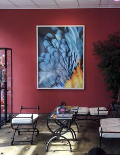Ara Artwork by Alexander Palacios Artwork, Prints, Painting, Color, Work Of Art, Auguste Rodin Artwork, Painting Art, Artworks, Printed