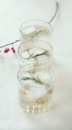 Bourbon Rosemary Fizz