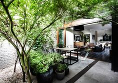 Love the huge, open windows that make the house part of the landscape.