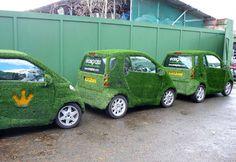 Genius brand signal for Easigrass - the artificial grass company