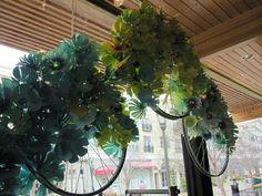 Bike wheels and flowers