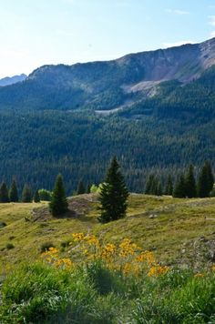 western vacation.  Deer Valley Ranch in Buena Vista, Co, grand canyon, etc.