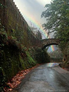 Estrada junto à Penha Verde - Sintra