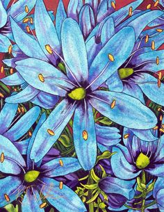 Blooming Camas - Wildflower Paintings and Garden Paintings.  Kendahl Jan Jubb. Idea for future project
