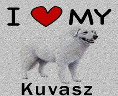 I Love My Kuvasz Cutting Board - Great For Kitchens by MyHeritageWear. $34.95