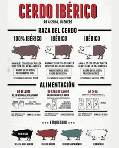 Iberico ham and Iberico de Bellota sound pretty similar but they are not the same. It\& important to know what to expect from each one. Spanish Dishes, Spanish Food, Learning Spanish, Food Graphic Design, Food Design, Ham Store, Meat Recipes, Gourmet Recipes, Best Food Photography