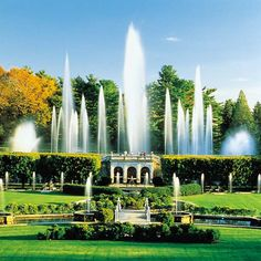The lovely Longwood Gardens of the United States.