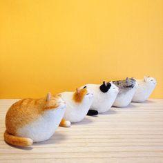 """1,066 次赞、 47 条评论 - mako (@mosscat25) 在 Instagram 发布:""""香箱座り型の猫軍団🐈 - - - - - - - 放置ベース、遂にすべて完成しました。 とても清々しい気分! #cat #neko #gingercat #calico #bicolorcat…"""""""