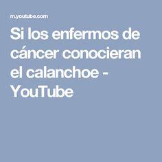 Si los enfermos de cáncer conocieran el calanchoe - YouTube