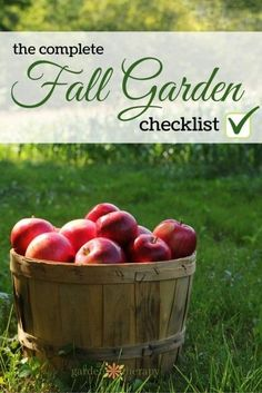 The Complete Checklist for Garden Tasks in Fall