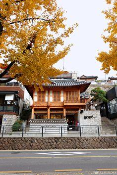 Autumn in Seoul,Korea Seoul Photography, Autumn Photography, South Korea Seoul, South Korea Travel, Seoul Places To Visit, Autumn In Korea, Korean Picture, Countries Of The World, Places Around The World