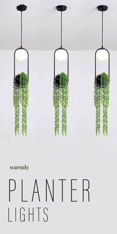Sky Garden Planter Lights - The ultimate way to bring a taste of the wild into your home.