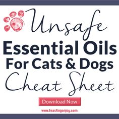 Does your pooch have breath that makes you want to keel over? Then it's time to use my Death Breath Be-Gone Doggy Mouth Spray with Essential Oils! Copaiba Essential Oil, Turmeric Essential Oil, Essential Oils For Massage, Eucalyptus Essential Oil, Heal Wounds Faster, Death Breath, Infrared Sauna Benefits, Healthy Blood Pressure, Skin Detox