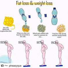 healthy weight loss strategies, things that females and guys should know and Understand the body fat and attain much healthier weight Weight Loss Plans, Weight Loss Transformation, Weight Loss Journey, Weight Loss Tips, Bodybuilding Transformation, Losing Weight, Weight Gain, Cheat Meal, Wallpaper Men