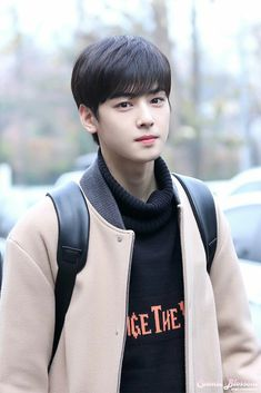 Cha eun woo from ASTRO can get the role of Suho Lee from the webtoon True Beauty who else thinks so plz vote dreamy af