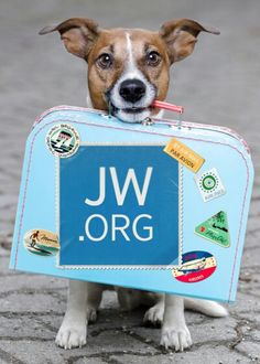 JW.ORG...check out preparedness tips here!