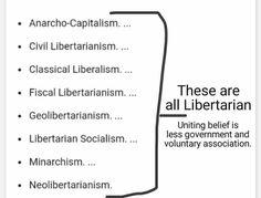 900 Lpin Memes Ideas Libertarian Party Libertarian Memes