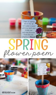 Spring is right around the corner! Spring means flowers are beautiful and full of bright colors. Of course, that leads to some great discussion about how flowers grow. Plants seeds in a flower pot is a great lesson plan. I've created a fun poem to put in the flower pot!  You can get this free by clicking on the link below. Just glue it to a popsicle stick and you're done! April Showers Bring May Flowers!  - Mrs. Jones' Creation Station #Spring #LessonPlans #TpT