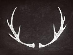 chalkboard art | antlers