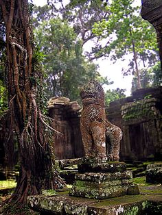 Preah Khan, Siem Reap, Cambodia Laos, Cambodia Travel, Vietnam Travel, Ancient Buildings, Ancient Architecture, Planning Board, Trip Planning, Cosmic Boy, Angkor Wat Cambodia