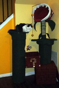 This is the Super Mario piranha plant cat tree made by Instructables user Geckoo_Designs. It's not like, a super PRO quality Super Mario piranha cat tree, but it's decent. Crazy Cat Lady, Crazy Cats, Super Mario Cat, Diy Cat Tree, Video Chat, Cat Towers, Cat Room, Pet Furniture, Mario Bros