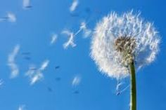 Symbols: Wind is also important during Confirmation symbolizing the Holy Spirit