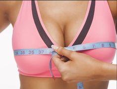 Incrementa el tamaño de tus senos o pechos sin cirugía. Estas plantas y semillas te pueden ayudar.
