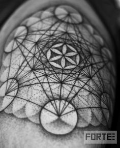 Flower of life/metatrons cube.    Dillon Forte, Sri Yantra Oakland CA. (www.DillonForteTattoo.com)