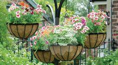 jardim-suspenso-vertical-ideias-14